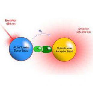 AlphaScreen 高通量药物筛选试剂