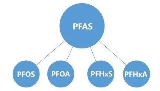 PFAS火了?快餐包装中检出致癌物质,珀金埃尔默轻松应对!