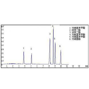 高效毛细管电泳仪(紫外检测)CL1020