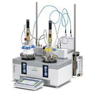 梅特勒-托利多反应量热仪 EasyMax 102 HFCal