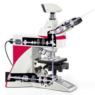 徕卡 DM4 B & 徕卡DM6 B 正置显微镜