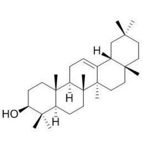 β-香树脂醇;beta-香树精 标准品