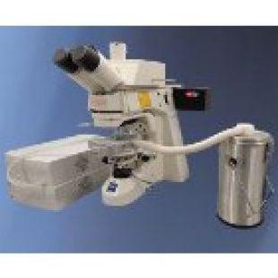 Jenlab   紧凑制冷型双光子显微成像系统