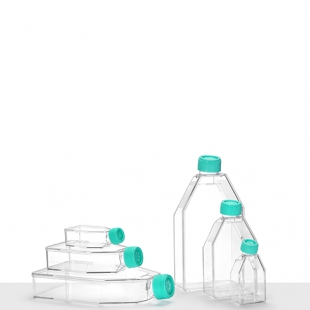 瑞沃德細胞培養瓶 TCF050系列