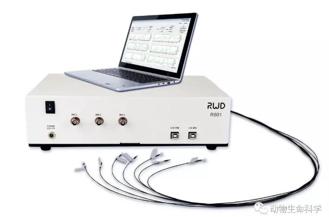 瑞沃德双色多通道光纤记录系统.png