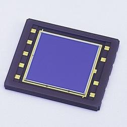 二维位置传感器 S5991-01