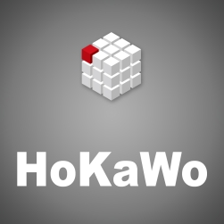 HoKaWo图像获取模块 U9304