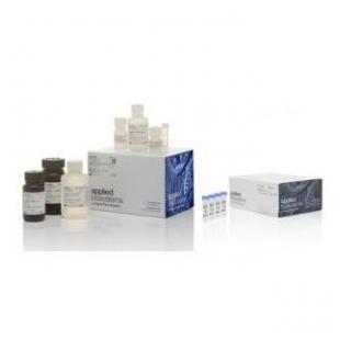 MagMAX™ CORE 核酸提取试剂盒 + MagMAX™ CORE 乳腺炎 & 泛细菌模块