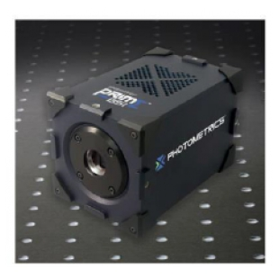 Prime BSI ™ 科学级 CMOS 相机