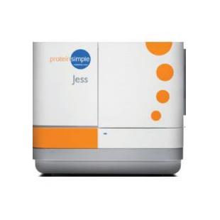 Jess多功能全自动蛋白免疫印迹定量分析系统