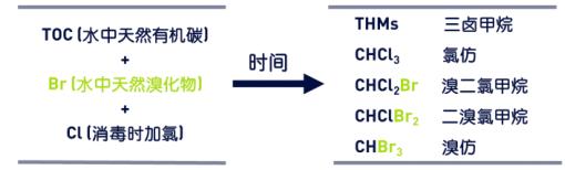 图 1:由 TOC、溴化物、氯形成的 THM.png