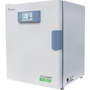 智能微电脑二氧化碳培养箱