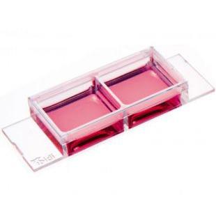 2孔腔室载玻片-无凹液面