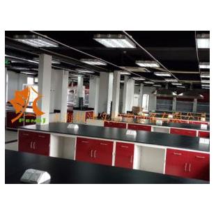 全钢实验台型号FJ-QGSYT19品牌枫津实验室设备