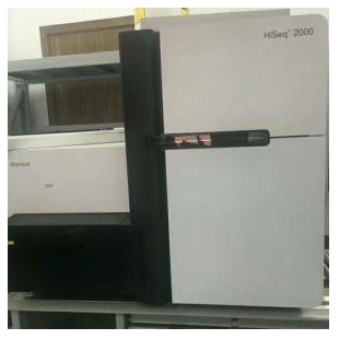llumina Hisep2000测序仪