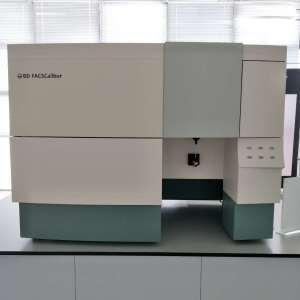 二手BD流式细胞仪FACSCalibur