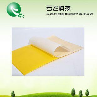 云飞牌杀虫黄板厂家、果蝇黄板、粘虫板价格、食用菌粘虫板