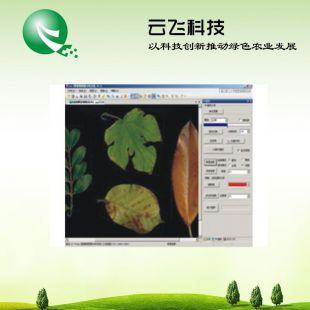 植物图像分析系统厂家|植物图像分析仪系统价格|河南云飞