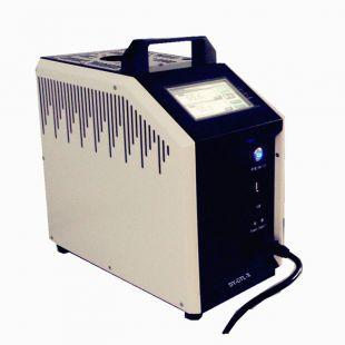 DY-GTL150X智能干体炉/干体式温度校验炉/干井炉(-35℃—150℃)