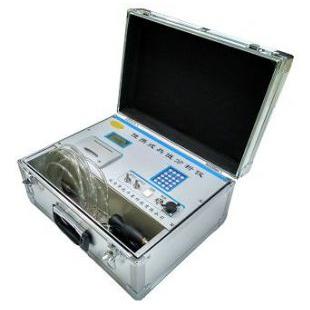 pGas2000-NG便携式天燃气/液化气/煤气热值分析仪