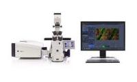昆明动物研究所激光共聚焦显微镜招标公告