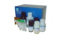 广西产品质量检验研究院实验试剂及耗材招标公告