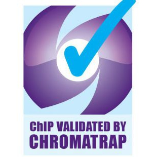 Chromatrap®高通量酶促ChIP qPCR蛋白A