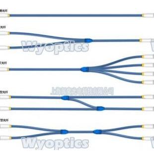 上海闻奕光纤多模光纤、特种石英光纤定制