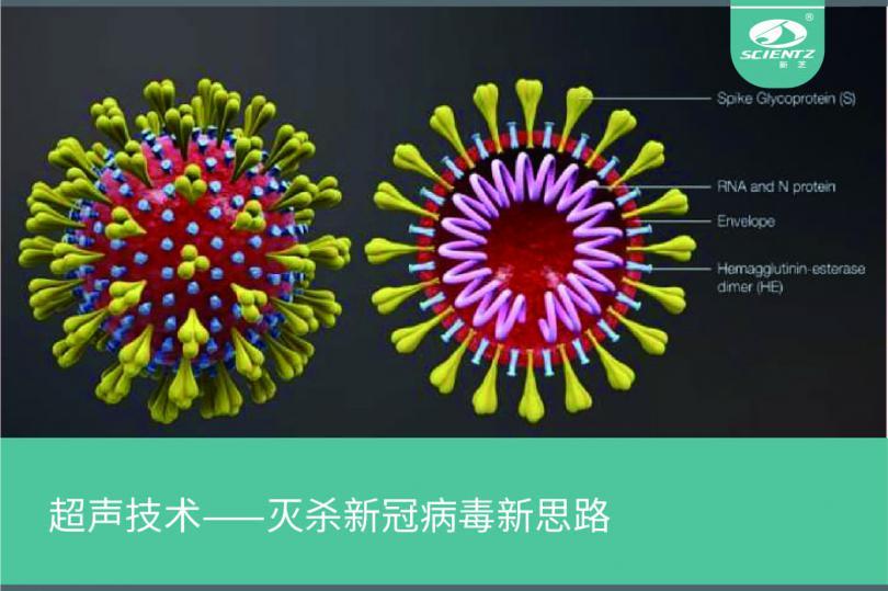 超声技术——灭杀新冠病毒新思路