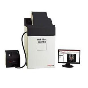 德國耶拿  活體成像儀UVP iBOX Scientia 900