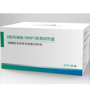 B型利钠肽(BNP)检测试剂盒(磁微粒化学发光免疫分析法)