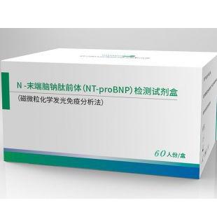 N-末端脑钠肽前体(NT-proBNP)检测试剂盒(磁微粒化学发光免疫分析法)