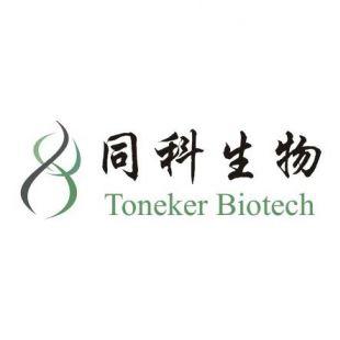 上海同科生物荧光定量PCR 技术服务