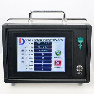 泰安德图老化试验箱温湿度参数检测仪DTZ-300