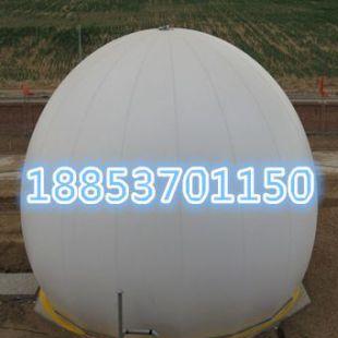 济宁力扬其它行业专用仪器ASD沼气设备促沼气工程解决养殖场污染