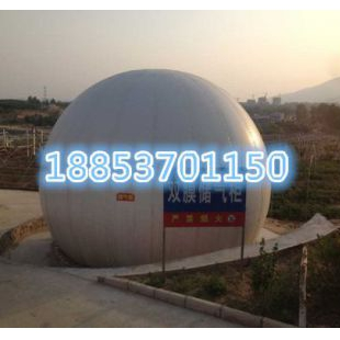 济宁力扬其它行业专用仪器DFR沼气设备提高沼气使用率