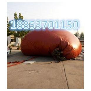 济宁力扬其它行业专用仪器GFHY沼气发酵袋可以折叠的沼气设备