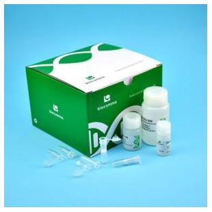 CommaXP™口腔拭子基因组DNA提取试剂盒