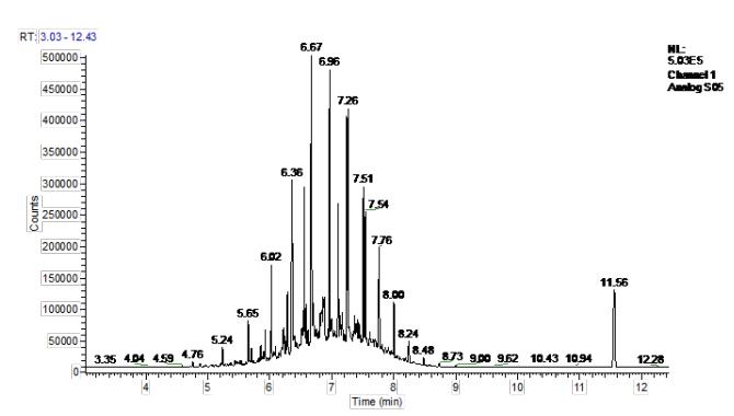 图3烃类FID端色谱图.png
