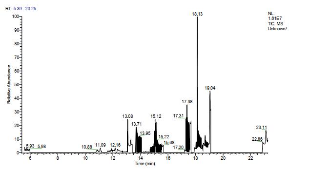 图13.空白色谱图.png