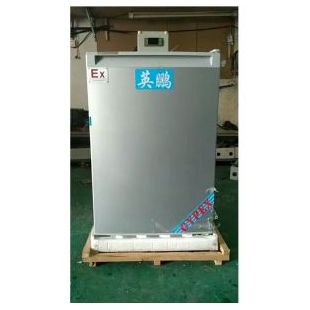 上海防爆冰箱(冷藏或冷冻小型)