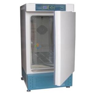 霉菌培養箱MJX-250細菌試驗箱