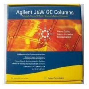 气相色谱毛细管柱GC& GC/MS capillary Columns