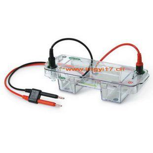 Bio-rad Mini-Sub Cell GT Cell美国伯乐小型水平电泳槽1704487