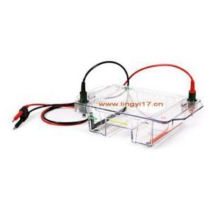 Bio-rad美国伯乐小型水平电泳槽Mini-Sub Cell GT Cell1704467