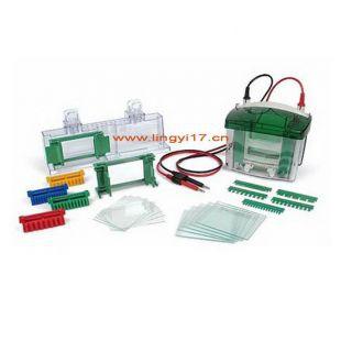 美国伯乐Mini-PROTEAN Tetra Cell小垂直板电泳槽1658003