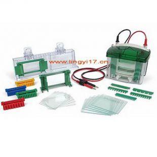 美國bio-rad伯樂小型垂直電泳槽1658002,1-2塊膠