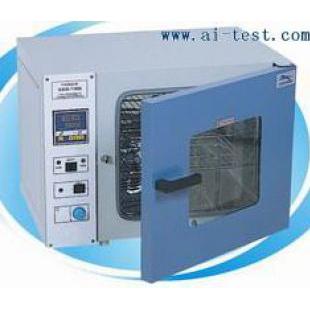 电热干燥箱培养箱