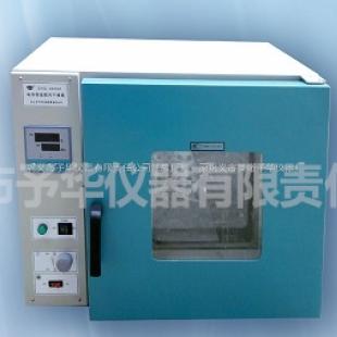 予华仪器其它清洗消毒设备DZF-6020