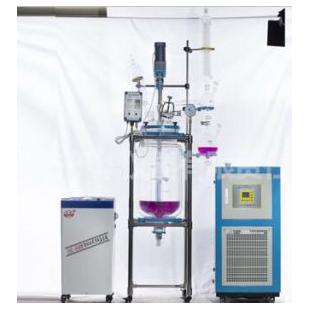 双层玻璃反应釜YSF-50L
